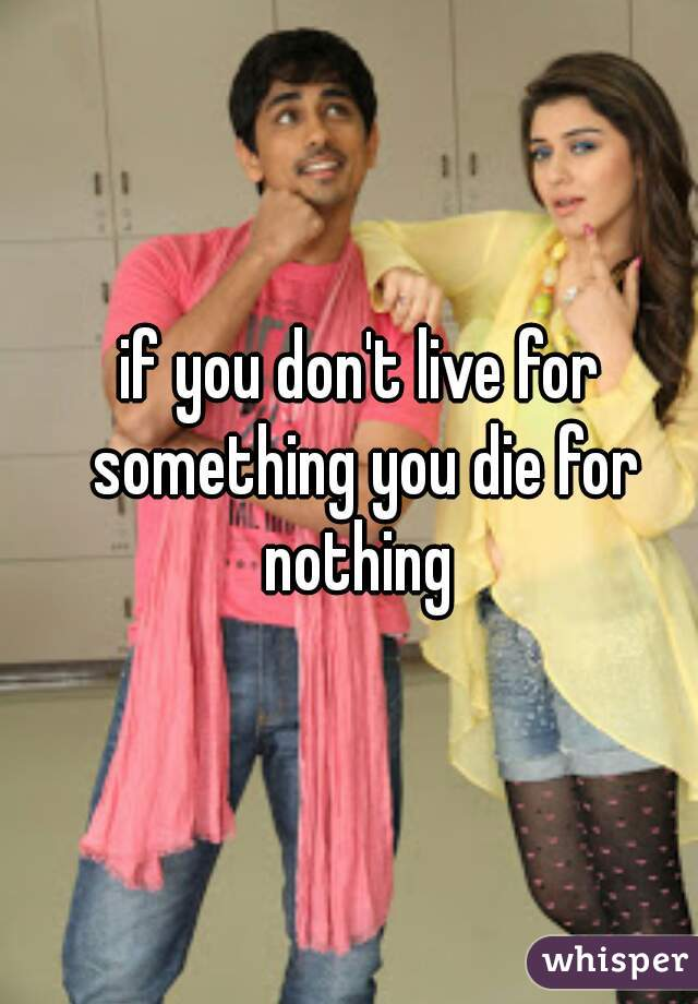if you don't live for something you die for nothing