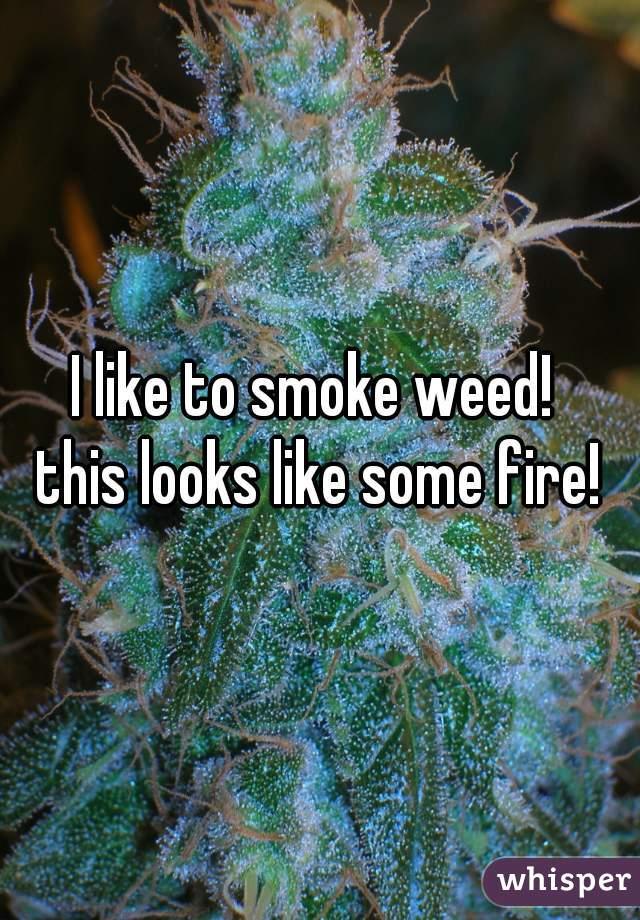 I like to smoke weed!  this looks like some fire!