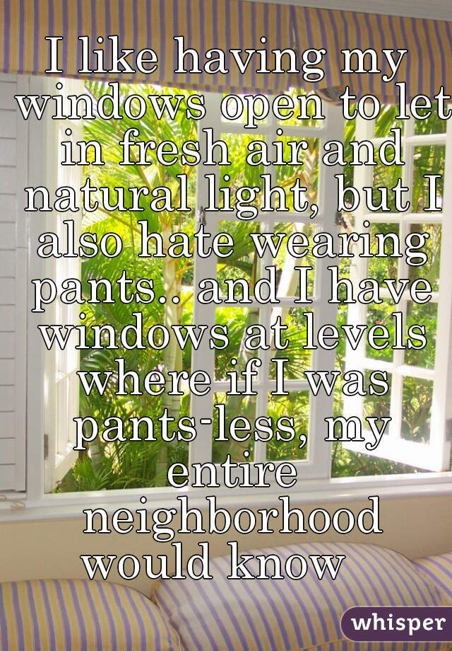 I like having my windows open to let in fresh air and natural light, but I also hate wearing pants.. and I have windows at levels where if I was pants-less, my entire neighborhood would know
