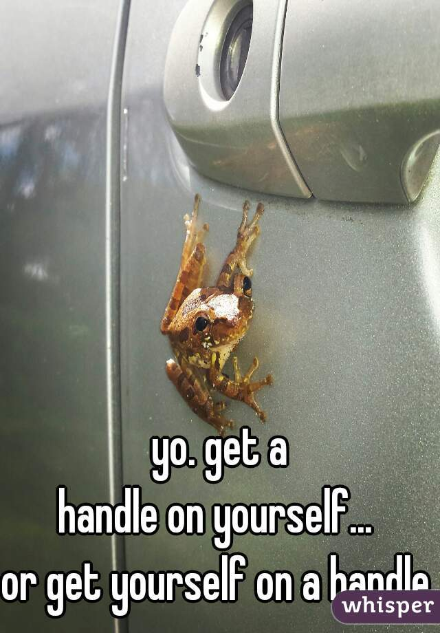 yo. get a handle on yourself...      or get yourself on a handle.