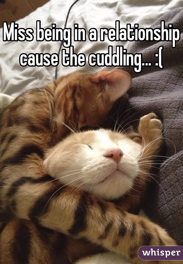 Miss being in a relationship cause the cuddling... :(