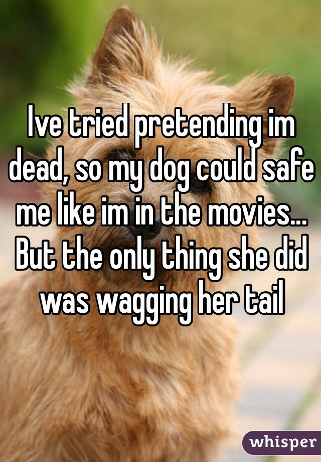 Ive tried pretending im dead, so my dog could safe me like im in the movies... But the only thing she did was wagging her tail