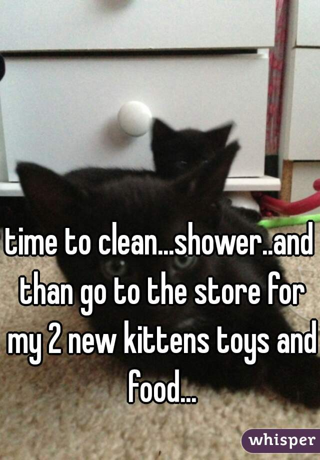 time to clean...shower..and than go to the store for my 2 new kittens toys and food...