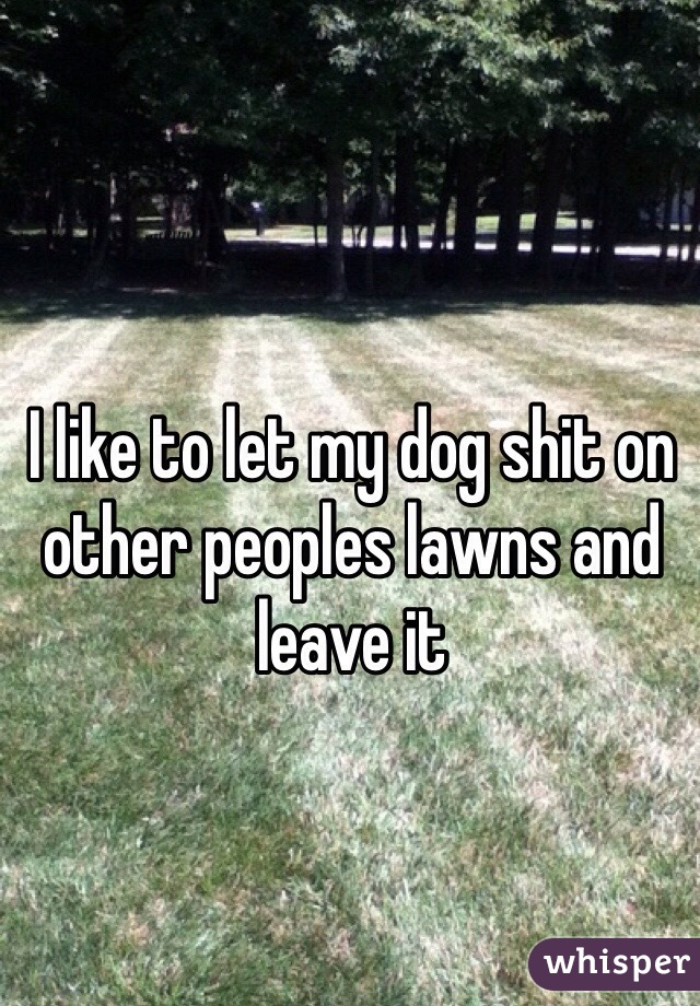 I like to let my dog shit on other peoples lawns and leave it