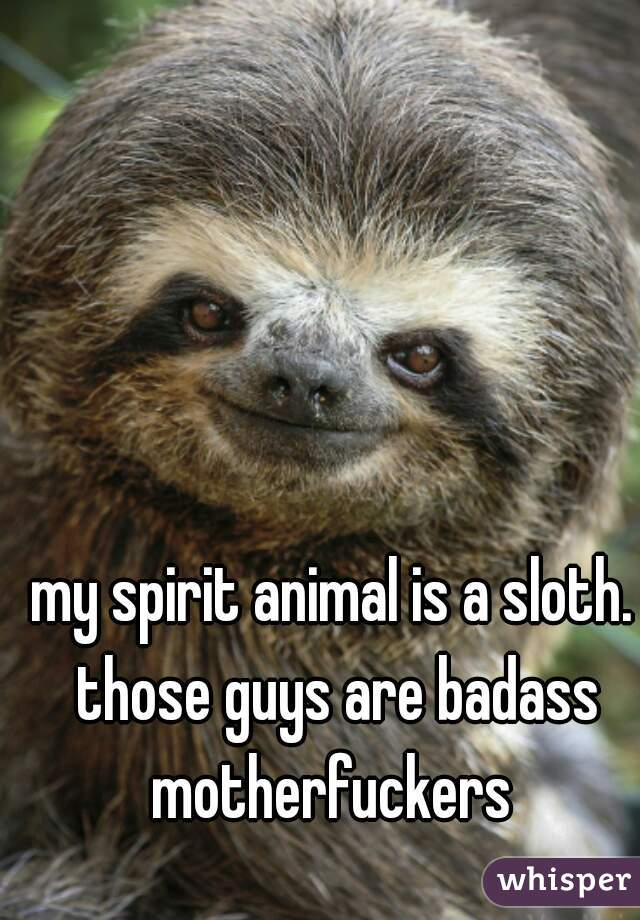 my spirit animal is a sloth. those guys are badass motherfuckers
