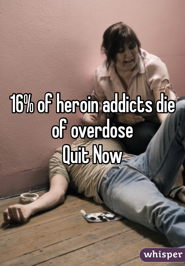 16% of heroin addicts die of overdose Quit Now