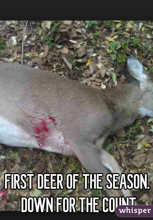 FIRST DEER OF THE SEASON. DOWN FOR THE COUNT