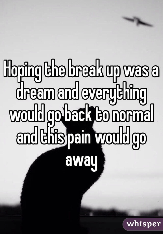 Hoping the break up was a dream and everything would go back to normal and this pain would go away