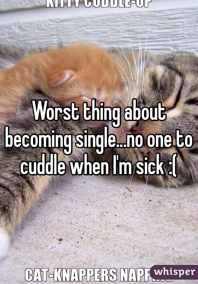 Worst thing about becoming single...no one to cuddle when I'm sick :(