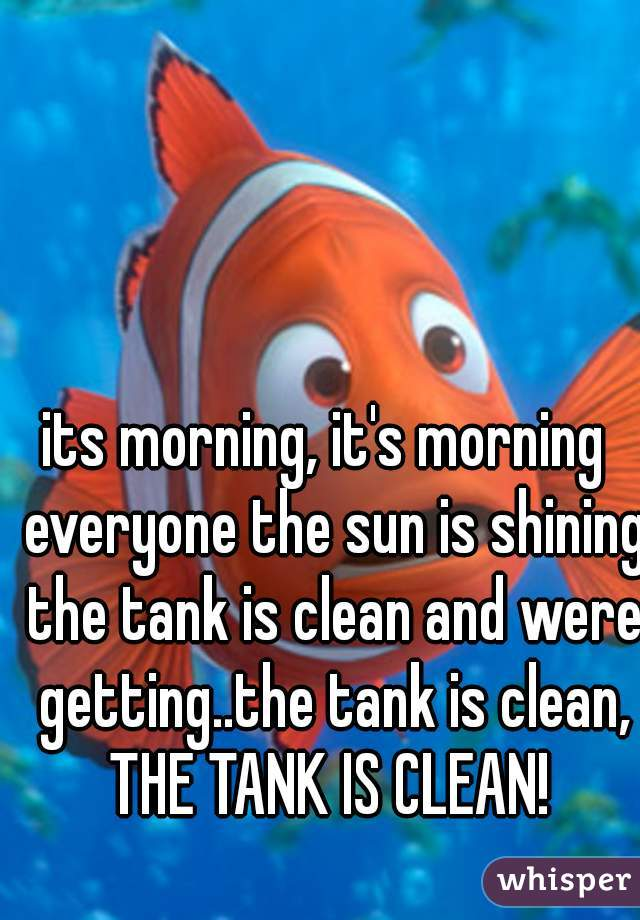 its morning, it's morning  everyone the sun is shining the tank is clean and were getting..the tank is clean, THE TANK IS CLEAN!
