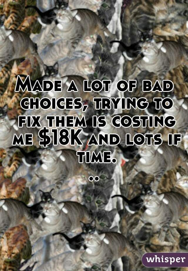 Made a lot of bad choices, trying to fix them is costing me $18K and lots if time...