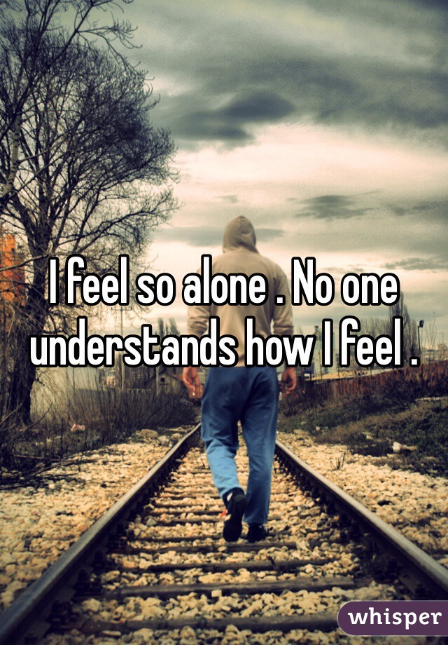 I feel so alone . No one understands how I feel .