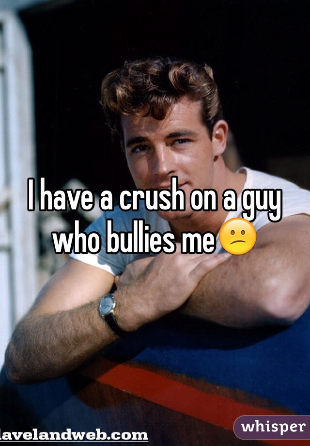 I have a crush on a guy who bullies me😕