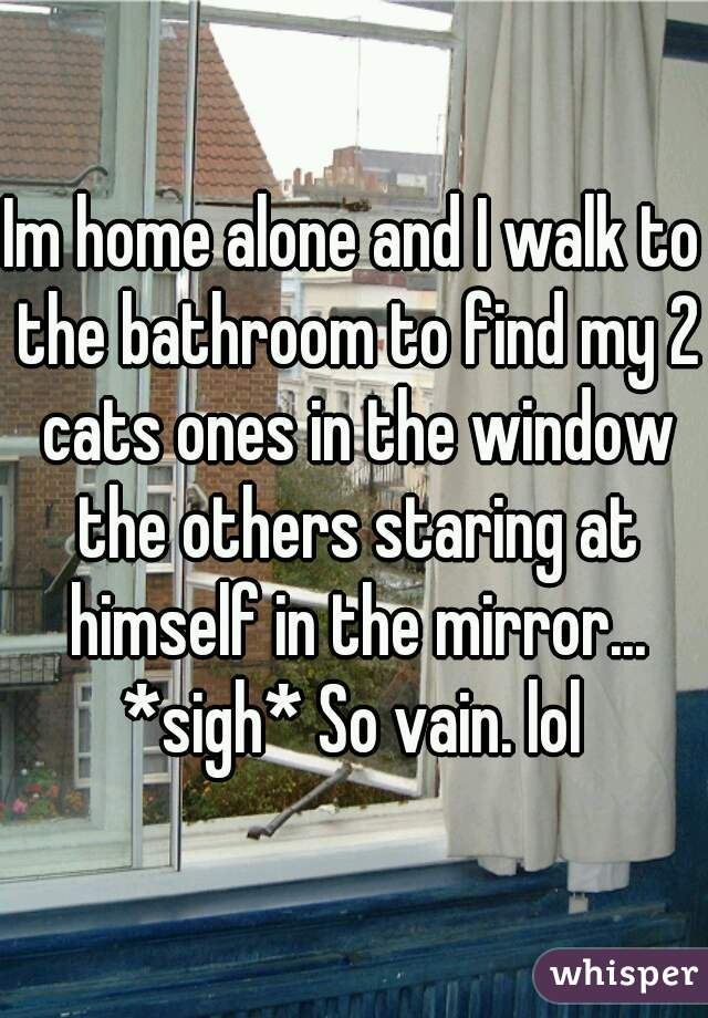 Im home alone and I walk to the bathroom to find my 2 cats ones in the window the others staring at himself in the mirror... *sigh* So vain. lol