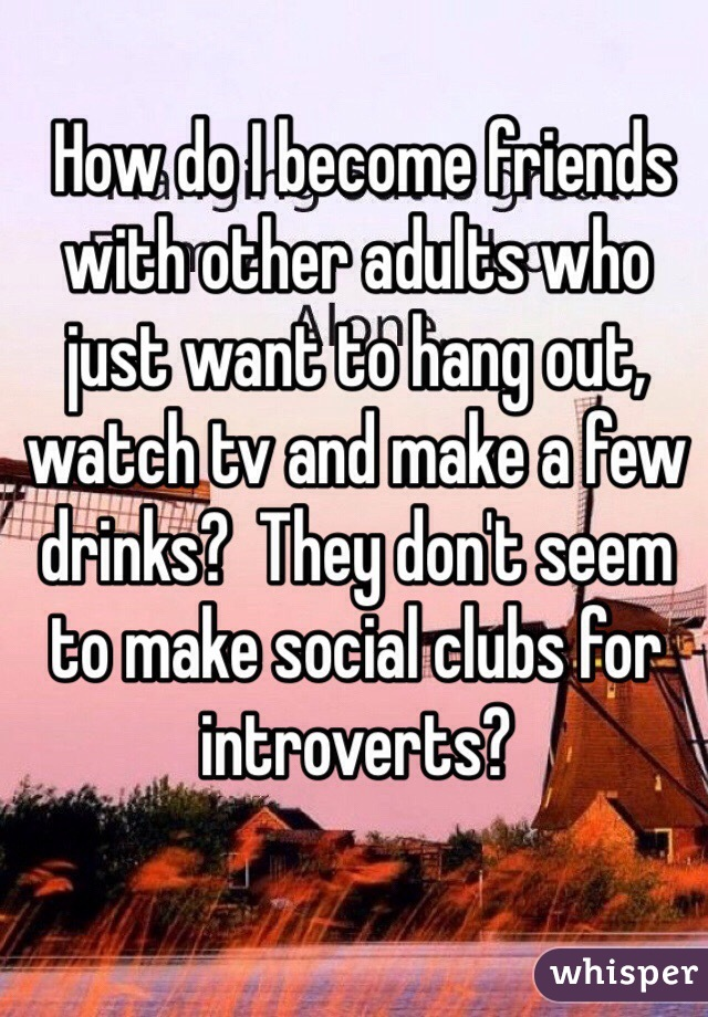 How do I become friends with other adults who just want to hang out, watch tv and make a few drinks?  They don't seem to make social clubs for introverts?