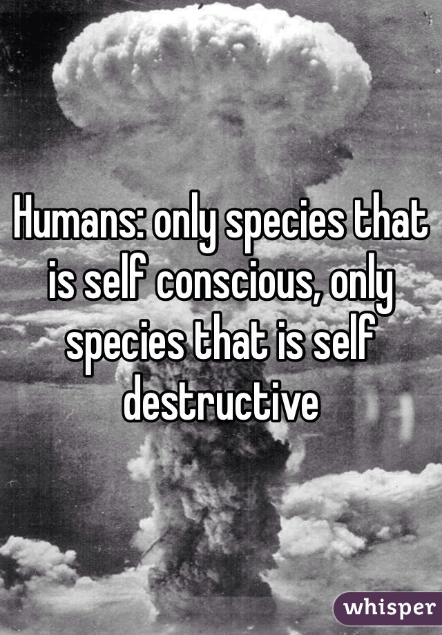Humans: only species that is self conscious, only species that is self destructive