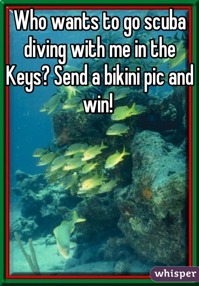 Who wants to go scuba diving with me in the Keys? Send a bikini pic and win!