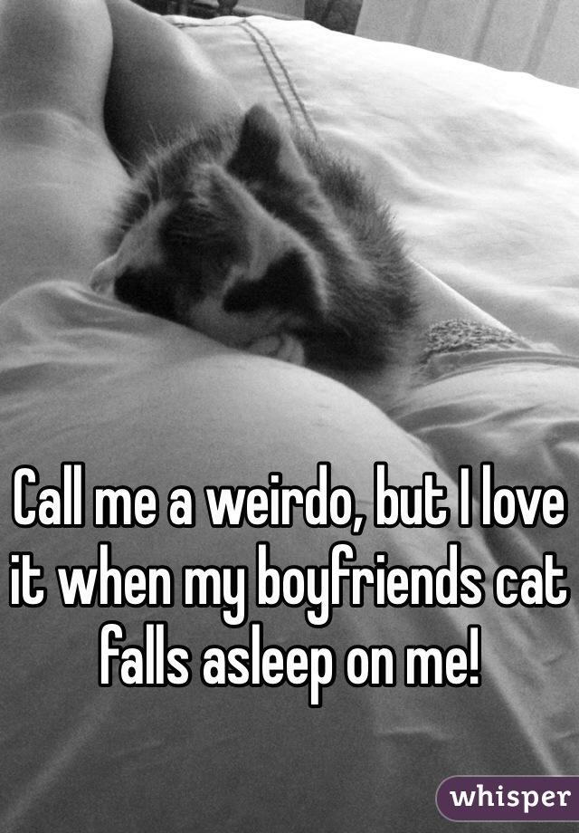 Call me a weirdo, but I love it when my boyfriends cat falls asleep on me!