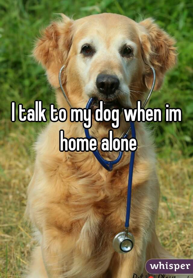 I talk to my dog when im home alone