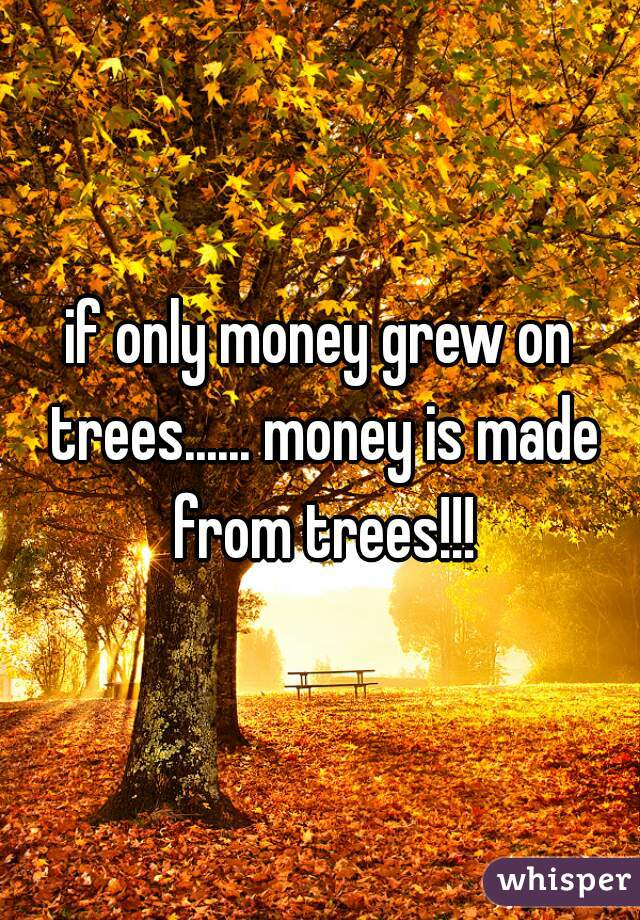 if only money grew on trees...... money is made from trees!!!