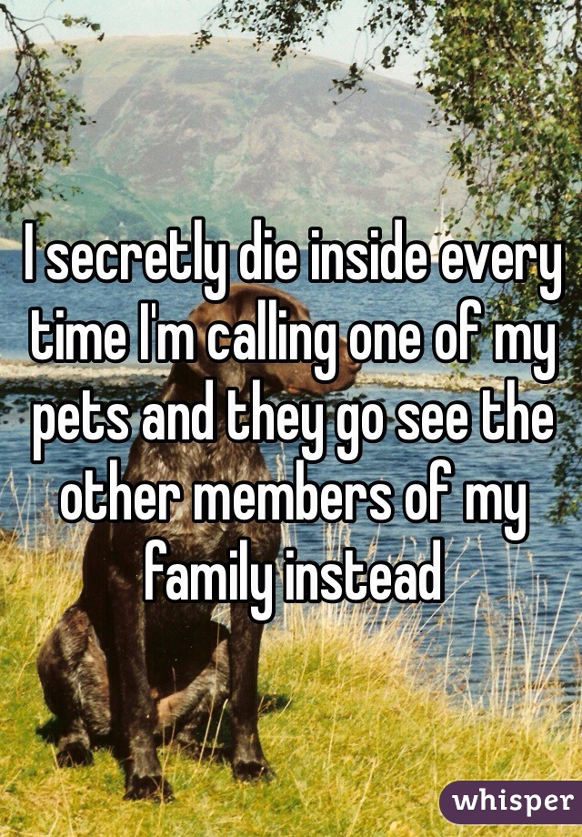 I secretly die inside every time I'm calling one of my pets and they go see the other members of my family instead