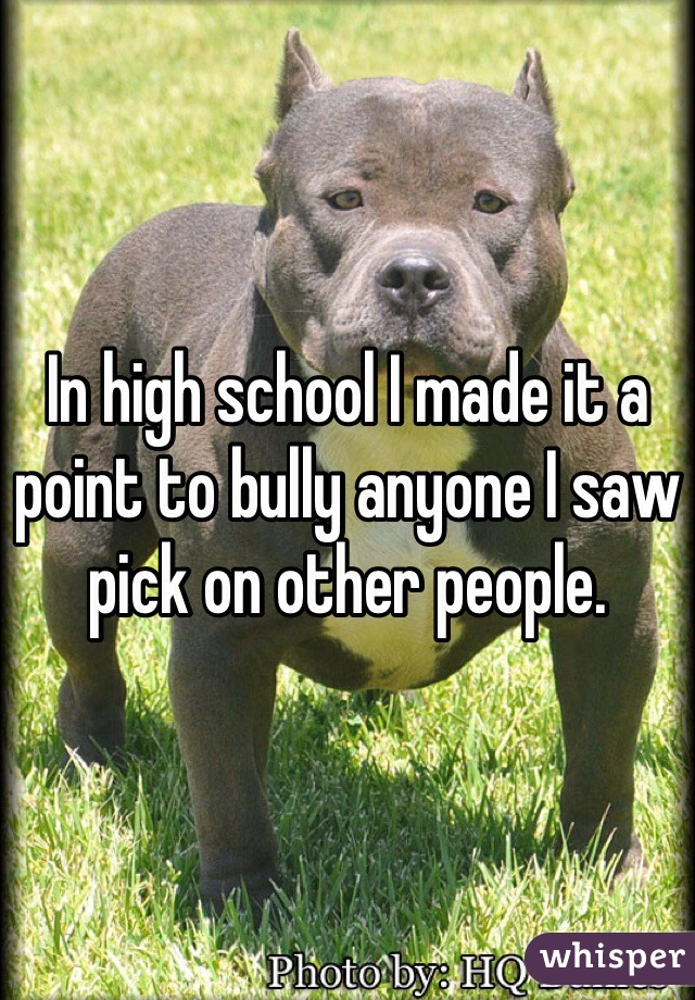 In high school I made it a point to bully anyone I saw pick on other people.