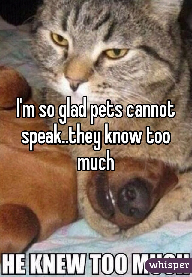 I'm so glad pets cannot speak..they know too much