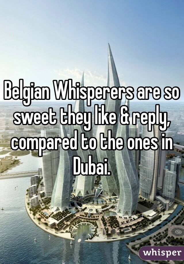 Belgian Whisperers are so sweet they like & reply, compared to the ones in Dubai.