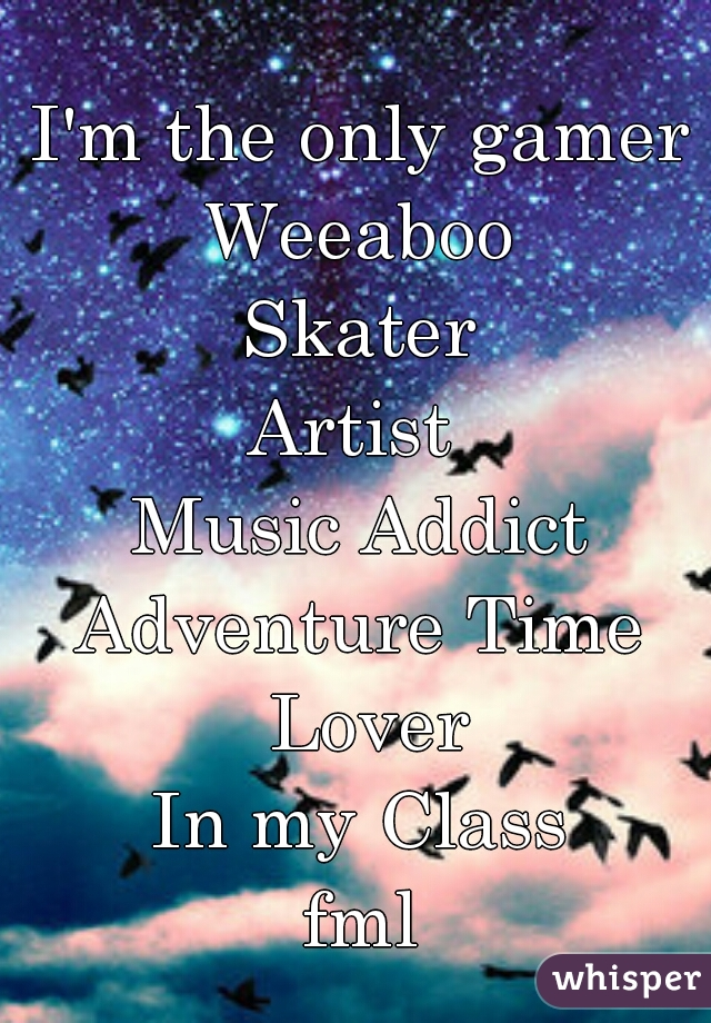 I'm the only gamer Weeaboo Skater Artist  Music Addict Adventure Time Lover In my Class fml