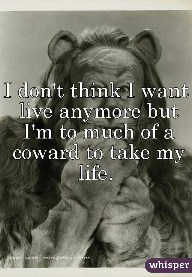 I don't think I want live anymore but I'm to much of a coward to take my life.