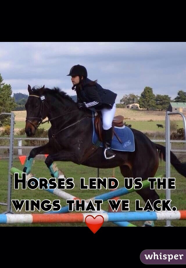 Horses lend us the wings that we lack. ❤️