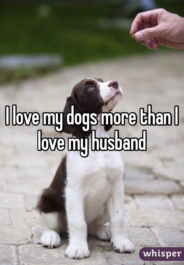 I love my dogs more than I love my husband