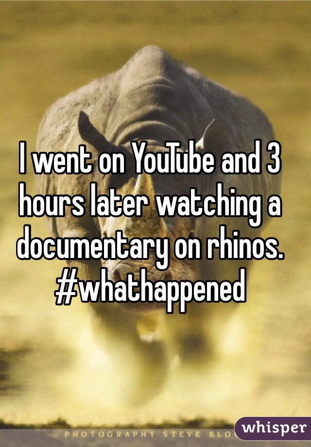 I went on YouTube and 3 hours later watching a documentary on rhinos. #whathappened