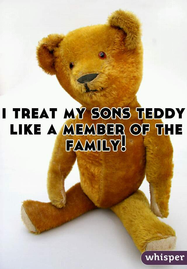 i treat my sons teddy like a member of the family!