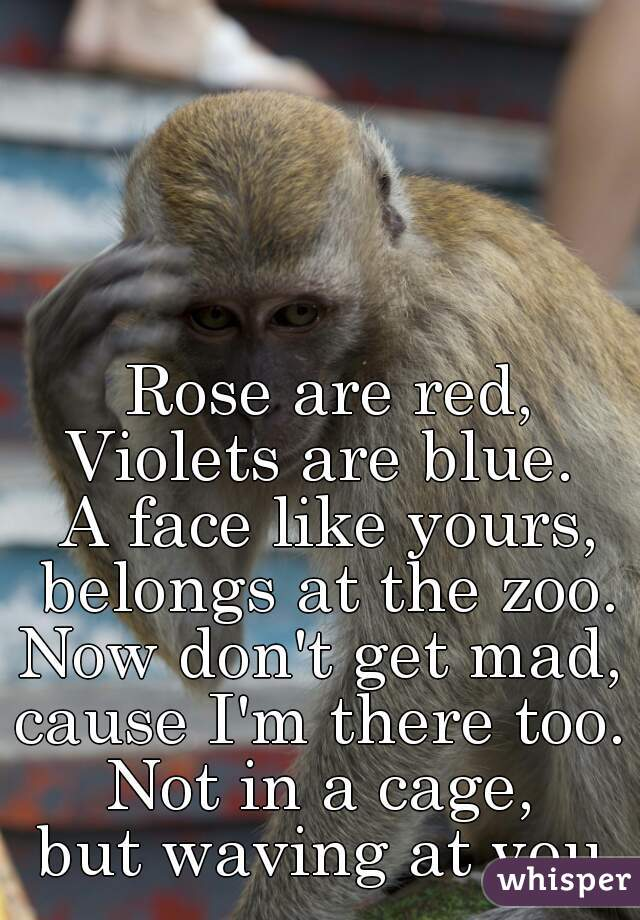 Rose are red, Violets are blue.   A face like yours, belongs at the zoo.  Now don't get mad,  cause I'm there too.   Not in a cage,  but waving at you.