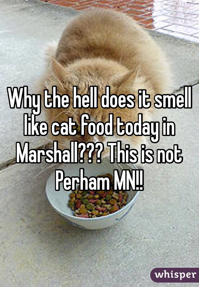 Why the hell does it smell like cat food today in Marshall??? This is not Perham MN!!
