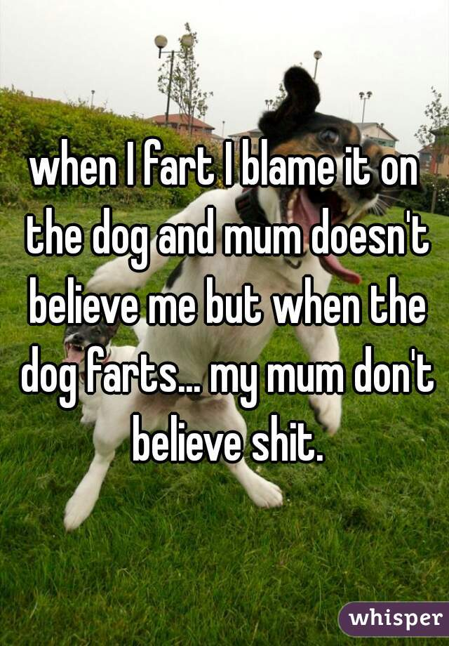 when I fart I blame it on the dog and mum doesn't believe me but when the dog farts... my mum don't believe shit.