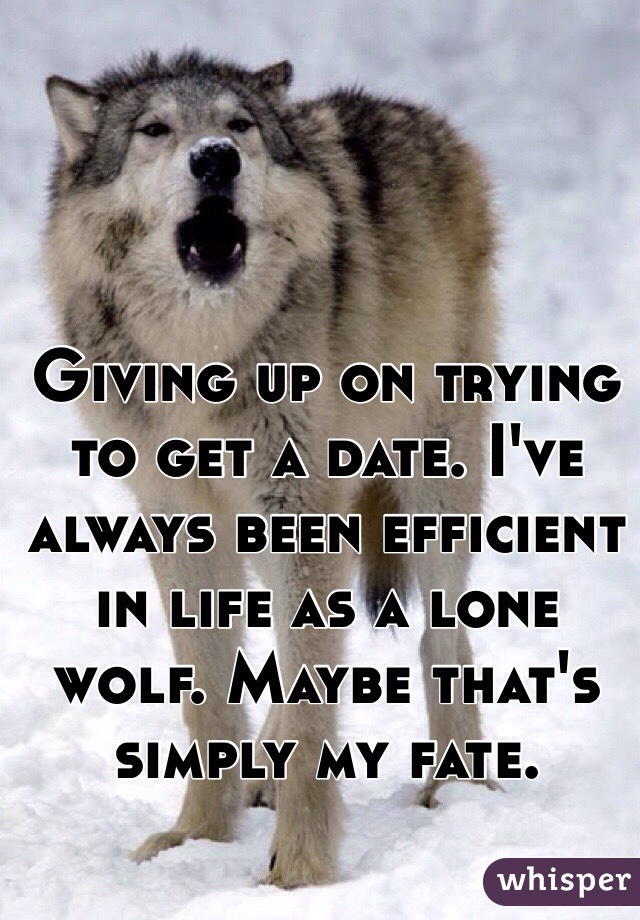 Giving up on trying to get a date. I've always been efficient in life as a lone wolf. Maybe that's simply my fate.