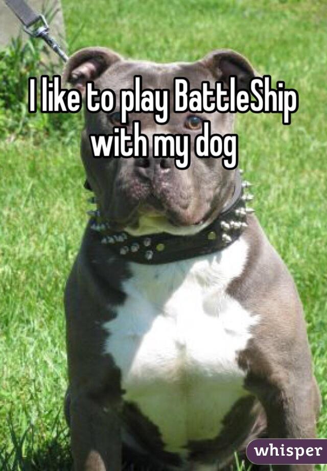 I like to play BattleShip with my dog