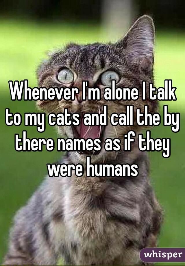 Whenever I'm alone I talk to my cats and call the by there names as if they were humans