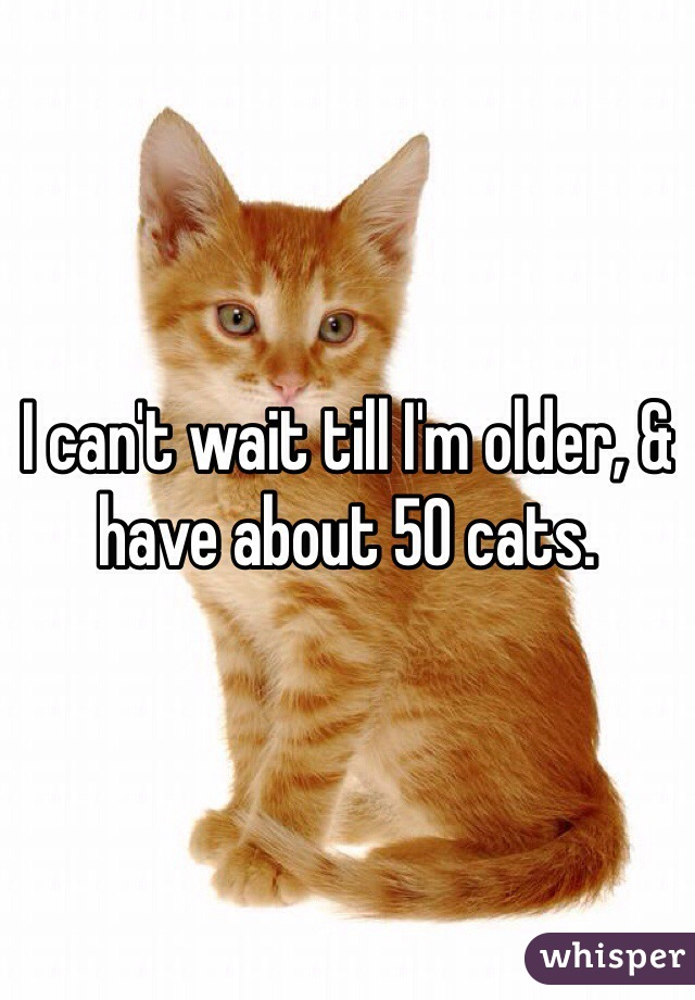 I can't wait till I'm older, & have about 50 cats.