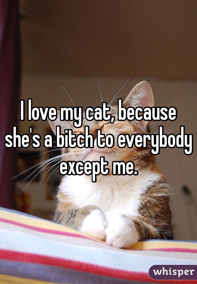 I love my cat, because she's a bitch to everybody except me.