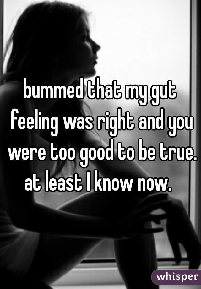 bummed that my gut feeling was right and you were too good to be true. at least I know now.