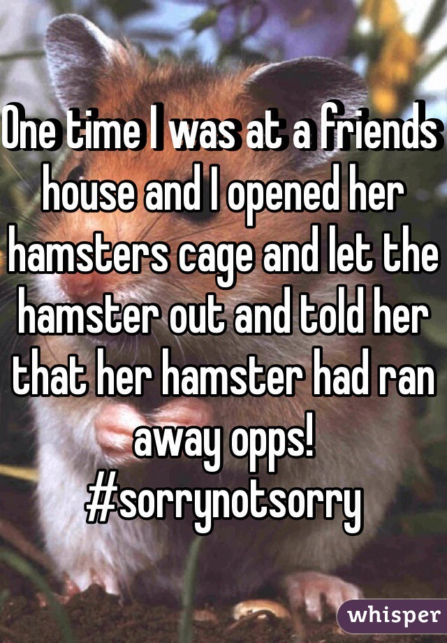 One time I was at a friends house and I opened her hamsters cage and let the hamster out and told her that her hamster had ran away opps!   #sorrynotsorry