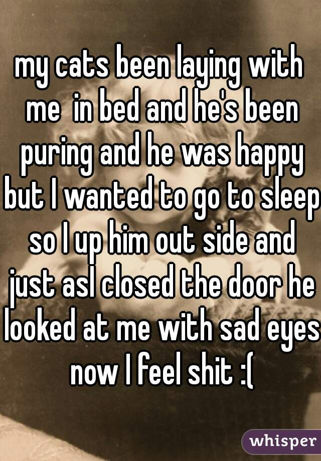 my cats been laying with me  in bed and he's been puring and he was happy but I wanted to go to sleep so I up him out side and just asI closed the door he looked at me with sad eyes now I feel shit :(