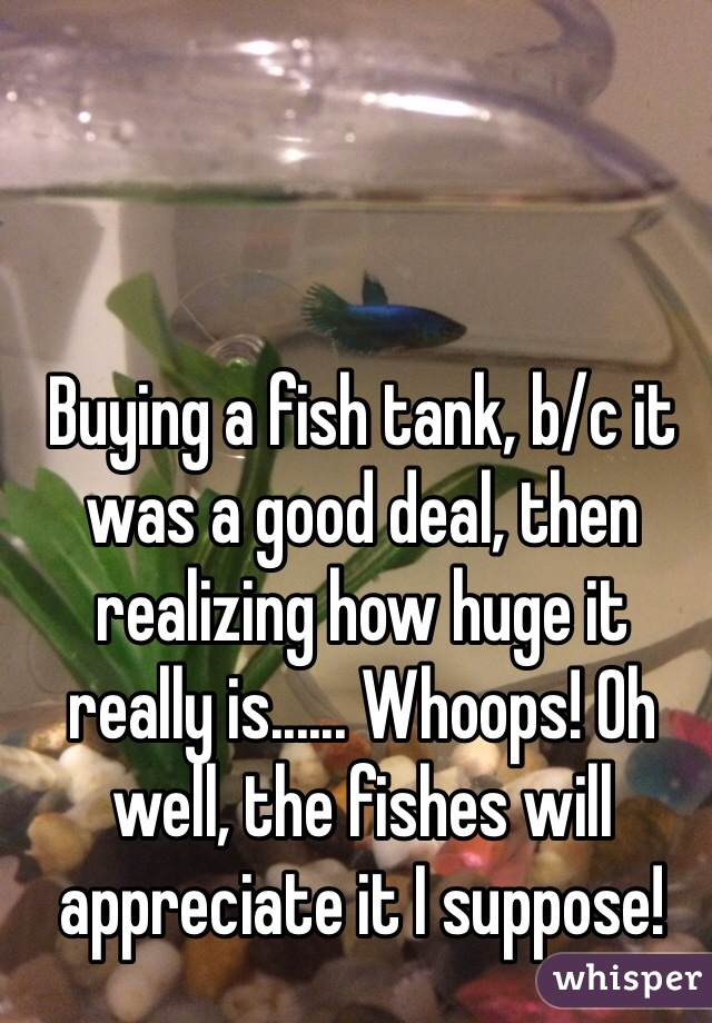 Buying a fish tank, b/c it was a good deal, then realizing how huge it really is...... Whoops! Oh well, the fishes will appreciate it I suppose!