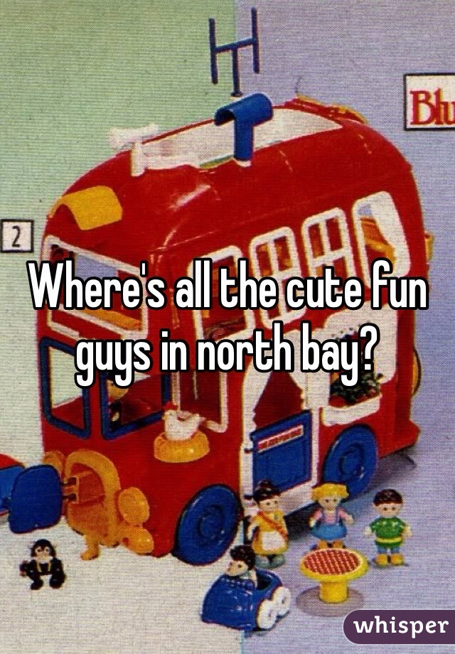 Where's all the cute fun guys in north bay?