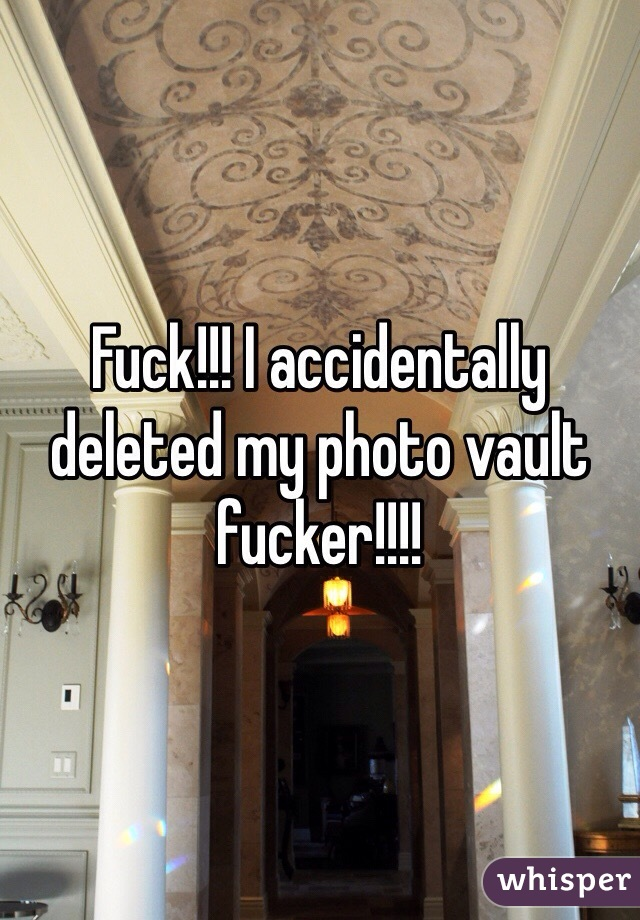 Fuck!!! I accidentally deleted my photo vault fucker!!!!