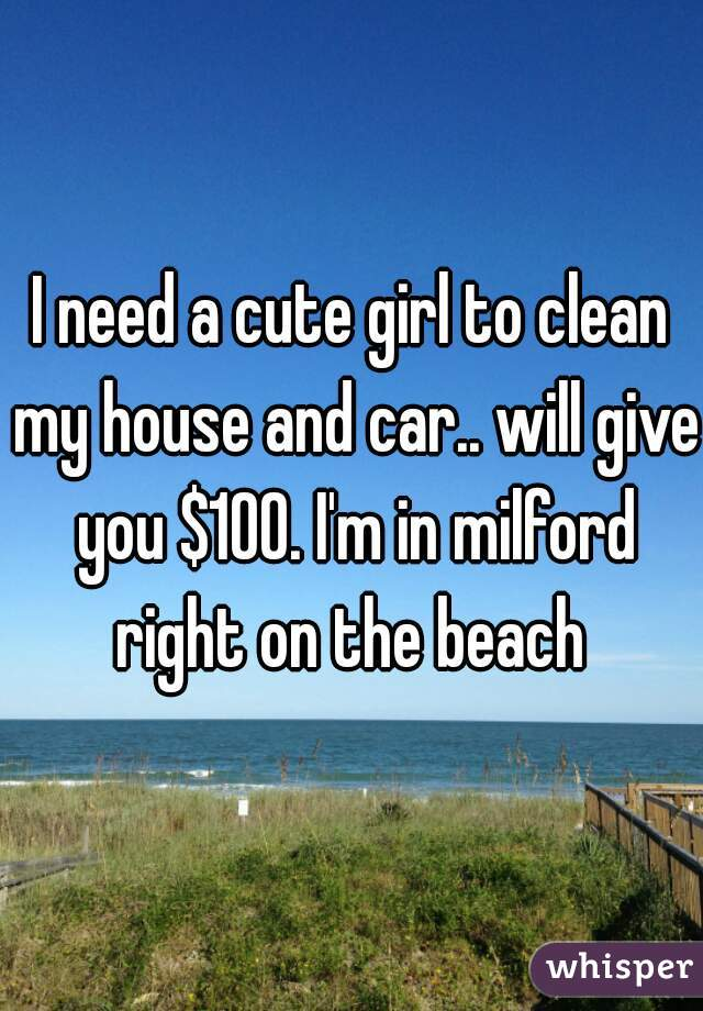 I need a cute girl to clean my house and car.. will give you $100. I'm in milford right on the beach