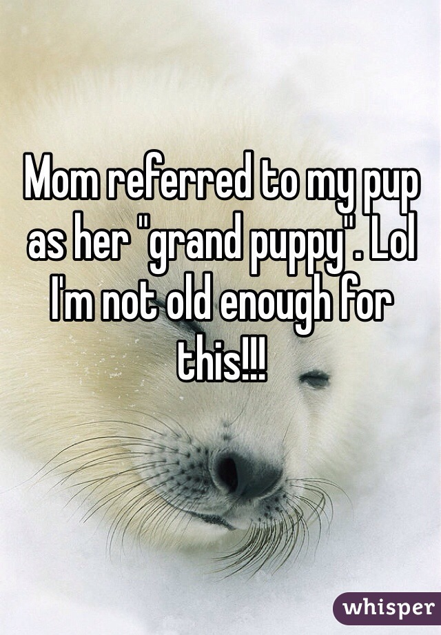 "Mom referred to my pup as her ""grand puppy"". Lol I'm not old enough for this!!!"